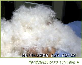高い技術を誇るリサイクル羽毛